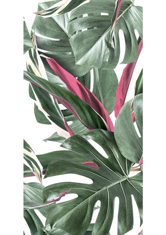 Botanical Wallpaper Monstera White and Pink by KEK Amsterdam