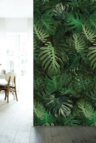 Botanical Wallpaper Monstera by KEK Amsterdam