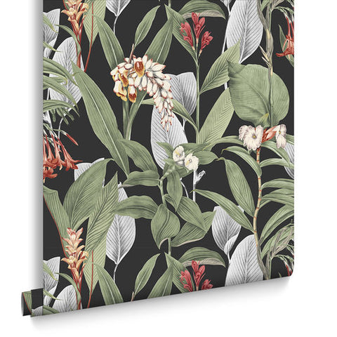 Botanical Wallpaper in Black from the Exclusives Collection by Graham & Brown