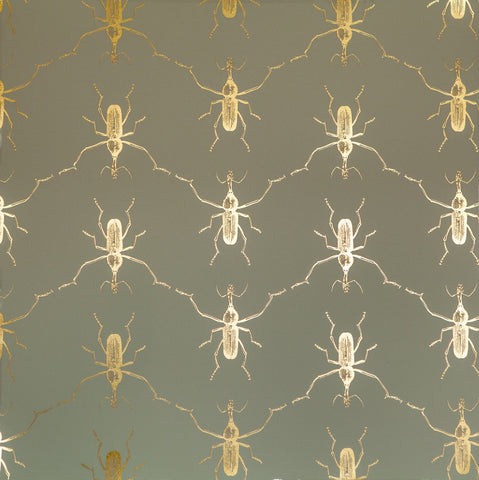 Buggie Wallpaper in Flashy Cadet by Abnormals Anonymous
