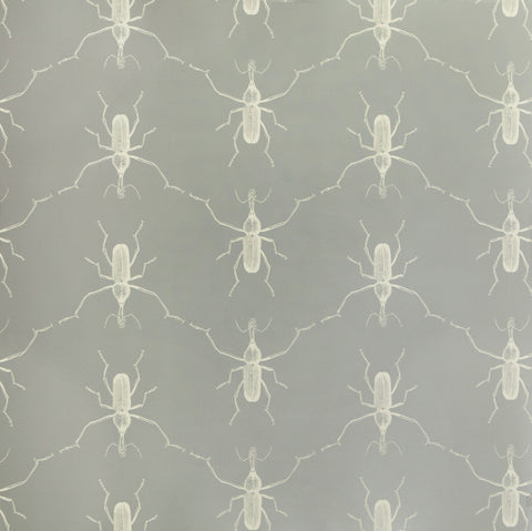 Buggie Wallpaper in Grey's Anatomy by Abnormals Anonymous