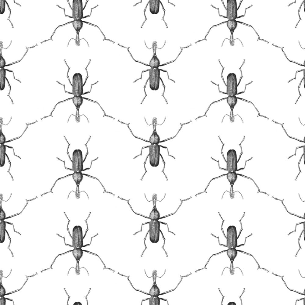 Buggie Wallpaper in Men In Black by Abnormals Anonymous
