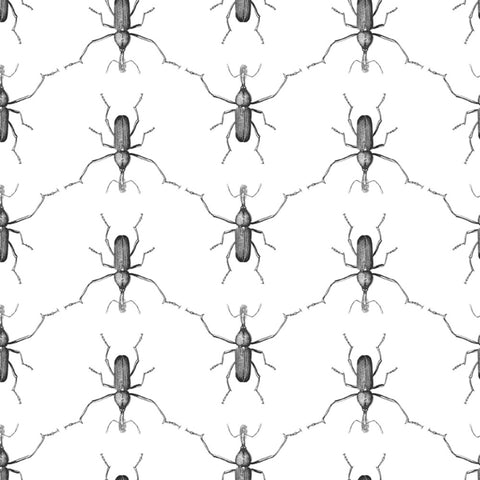 Sample Buggie Wallpaper in Men In Black by Abnormals Anonymous