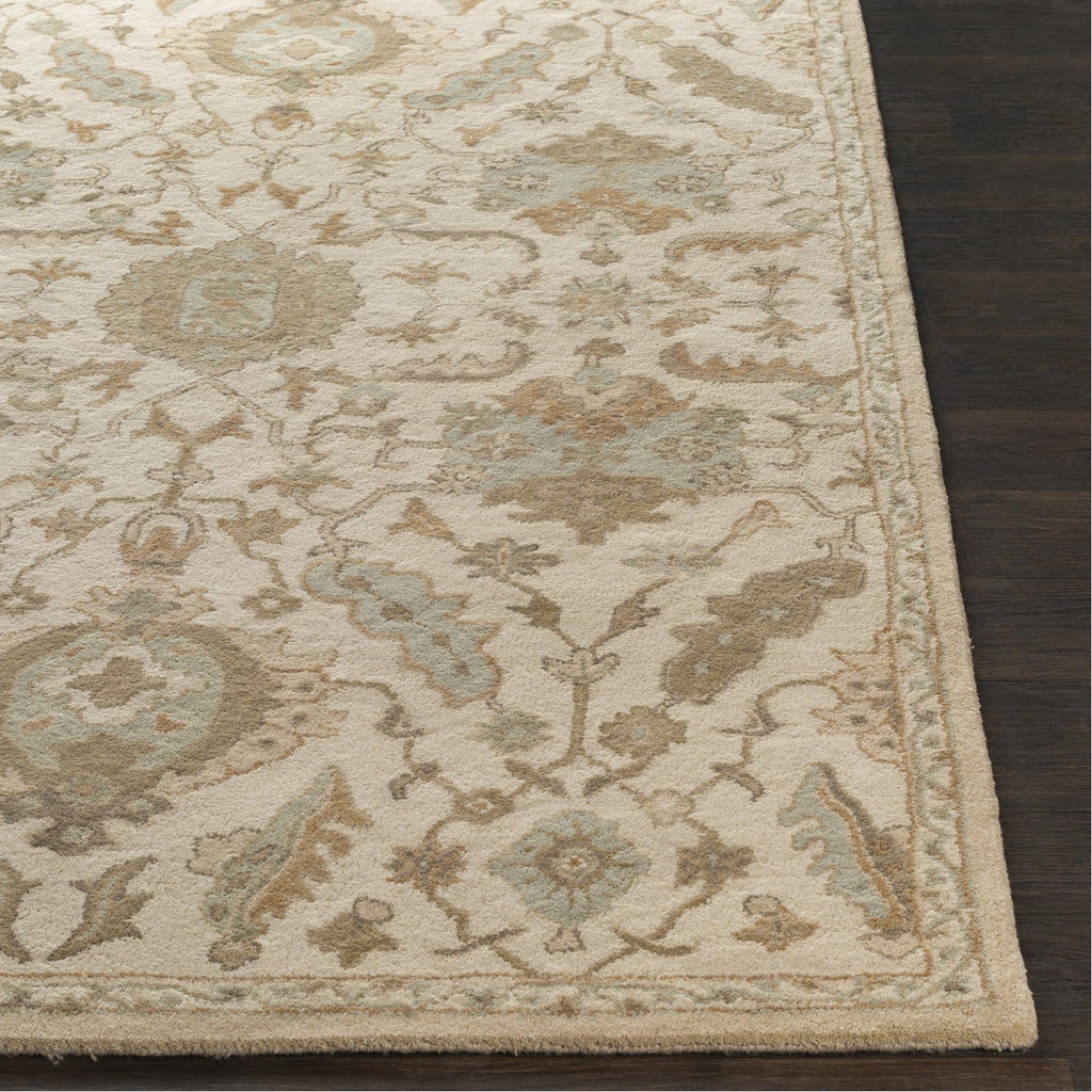 Caesar CAE-1166 Hand Tufted Rug in Beige & Tan by Surya