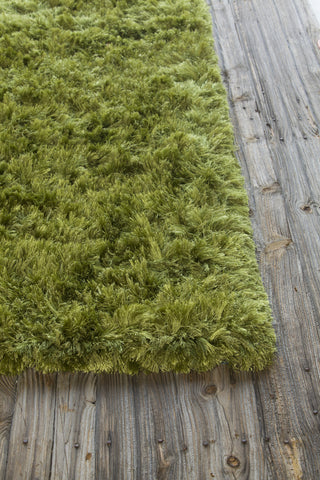 Celecot Collection Hand-Woven Area Rug in Green