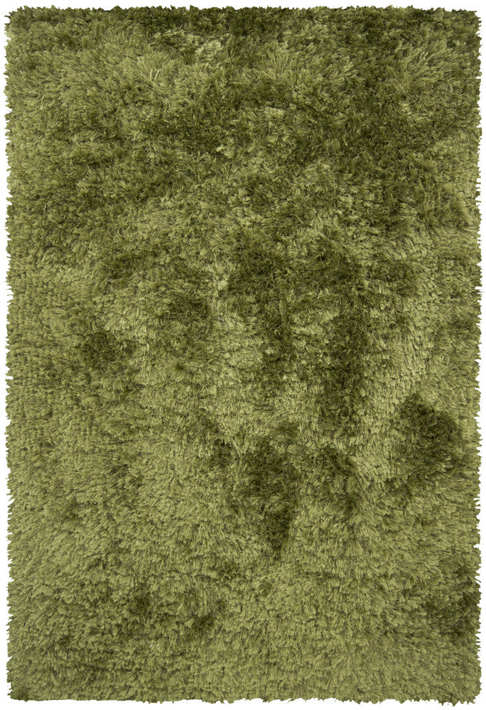 Celecot Collection Hand-Woven Area Rug in Green design by Chandra rugs