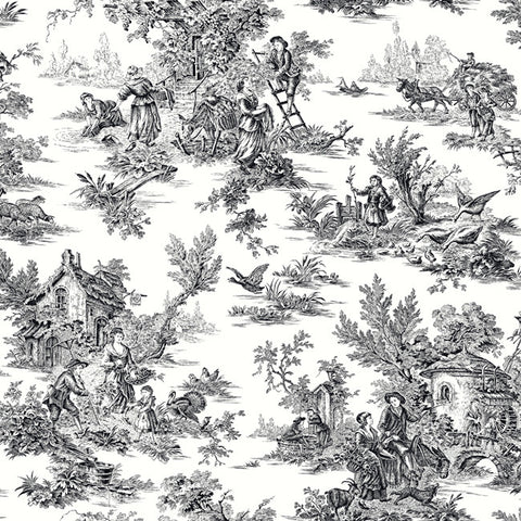 Black and white wallpaper modern designs burke dcor burke decor campagne toile wallpaper in black and white by ashford house for york wallcoverings mightylinksfo