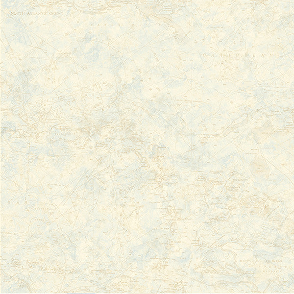 Sample Canaveral Wheat Nautical Chart Wallpaper from the Seaside Living Collection by Brewster Home Fashions