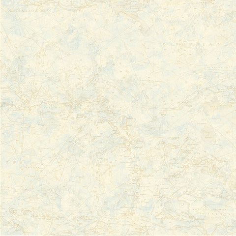 Canaveral Wheat Nautical Chart Wallpaper from the Seaside Living Collection by Brewster Home Fashions ...