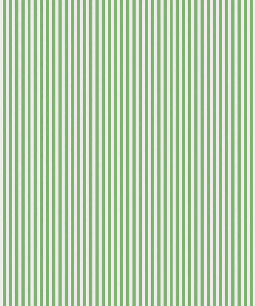 Candy Stripe Wallpaper in Green by Bethany Linz for Milton & King