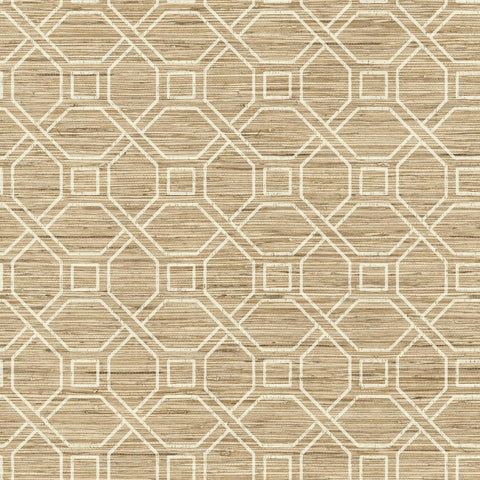 Coastal Trellis Peel & Stick Wallpaper in Tan by RoomMates for York Wallcoverings