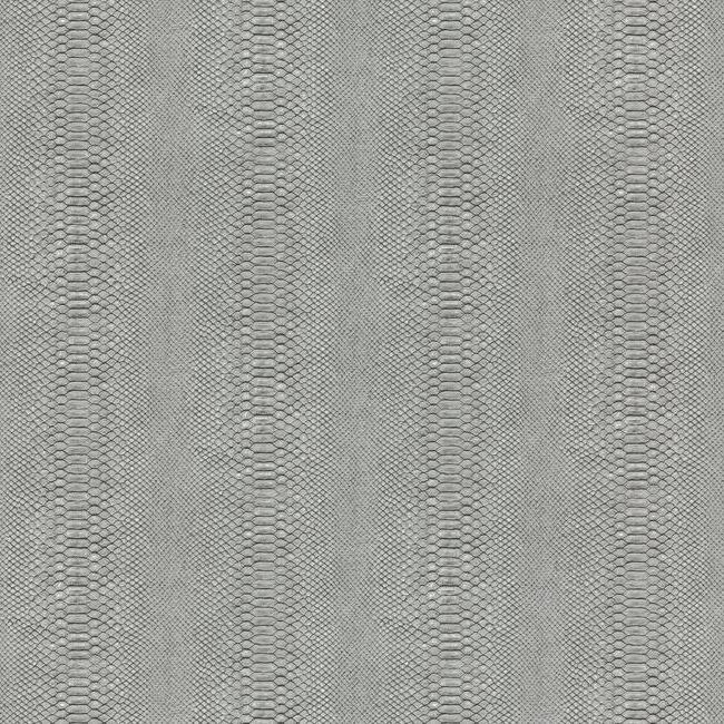 Sample Cobra Wallpaper in Charcoal and Black from the Urban Oasis Collection by York Wallcoverings