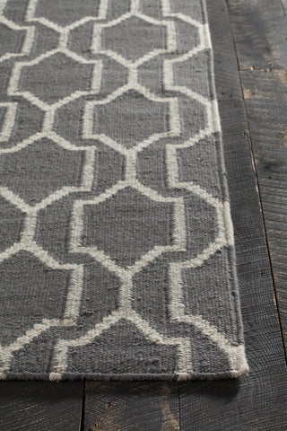 Dacio Collection Hand-Woven Area Rug in Grey & White design by Chandra rugs
