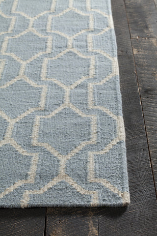 Dacio Collection Hand-Woven Area Rug in Blue & White design by Chandra rugs