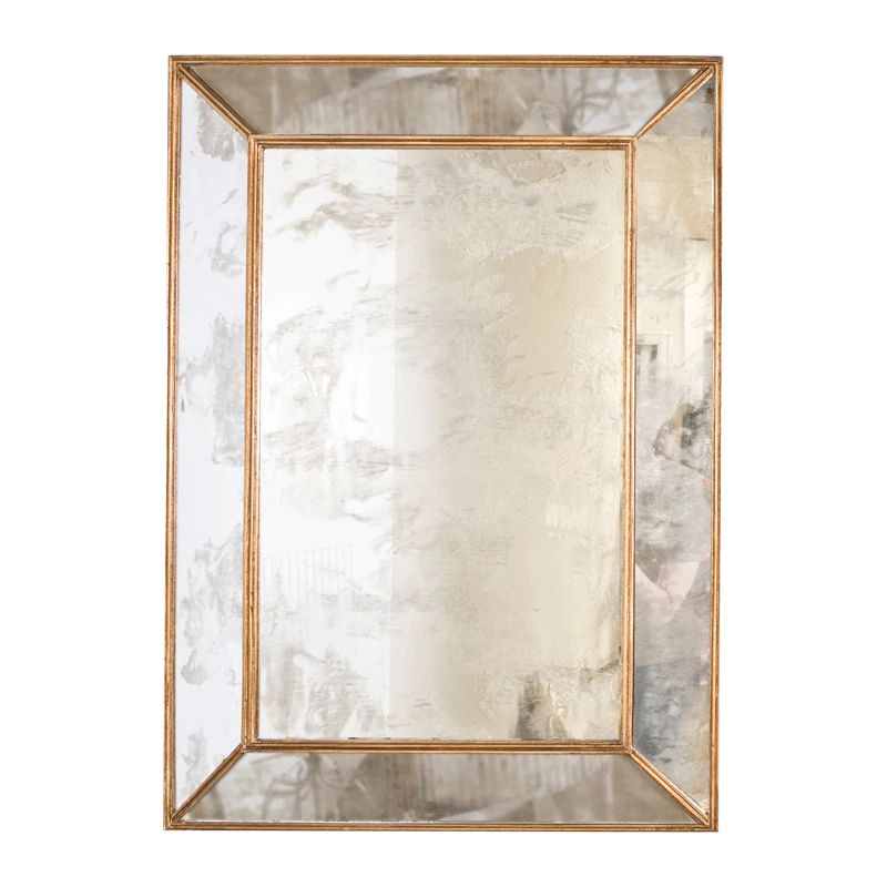 Dion Rectangular Antique Mirror w/ Gold Leafed Wood Edges