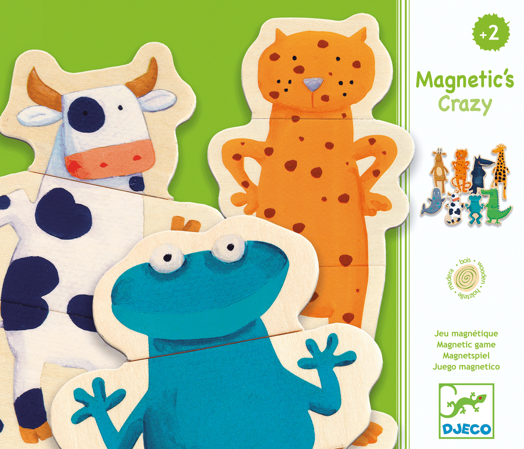 Wooden Magnetics Crazy design by DJECO