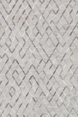 Dorado Rug in Grey by Loloi