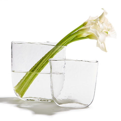 Ellipse Set of 2 Clear Vases
