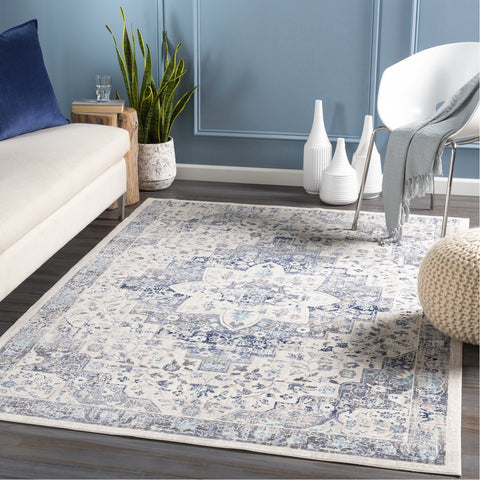 Dublin DUB-2302 Rug in White & Aqua by Surya