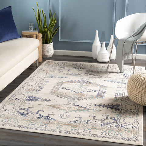 Dublin DUB-2311 Rug in Taupe & Navy by Surya