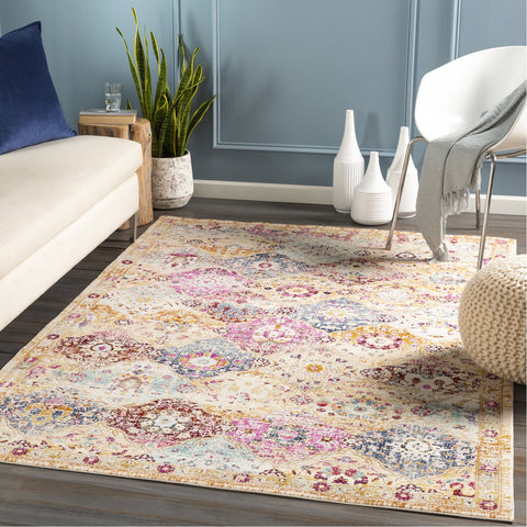 Dublin DUB-2312 Rug in Multi-Color by Surya
