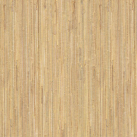 Daria Beige Grasscloth Wallpaper from the Jade Collection by Brewster Home Fashions
