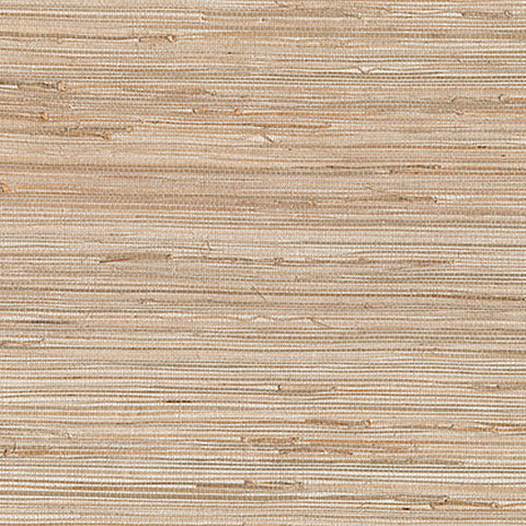 Daria Neutral Grasscloth Wallpaper from the Jade Collection by Brewster Home Fashions
