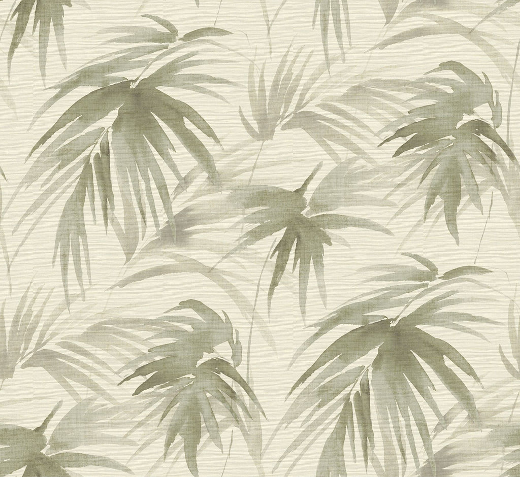Sample Darlana Grasscloth Wallpaper in Sage from the Scott Living Collection by Brewster Home Fashions