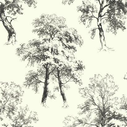 Deciduous Wallpaper In Black And White By Ashford House