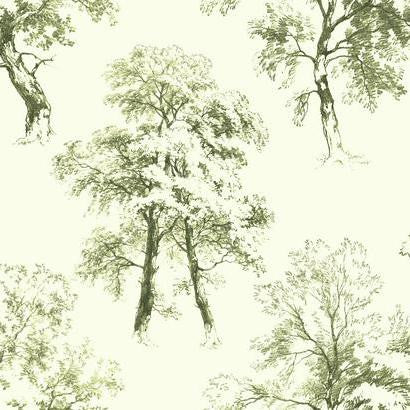 Deciduous Wallpaper in Green by Ashford House for York Wallcoverings