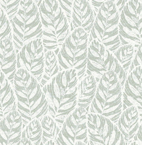 Del Mar Botanical Wallpaper in Sage Leaf from the Scott Living Collection by Brewster Home Fashions