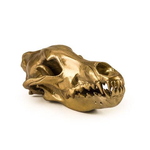 Wolf Skull design by Seletti