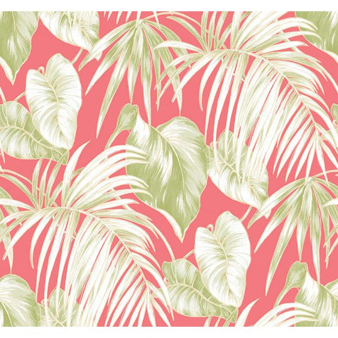 Dominica Wallpaper in Pink and Green from the Tortuga Collection by Seabrook Wallcoverings