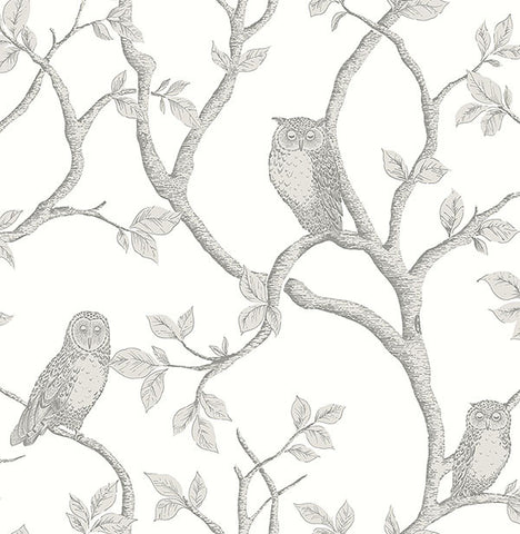 Enchanted Forest Grey Owl & Tree Wallpaper from the Essentials Collection by Brewster Home Fashions