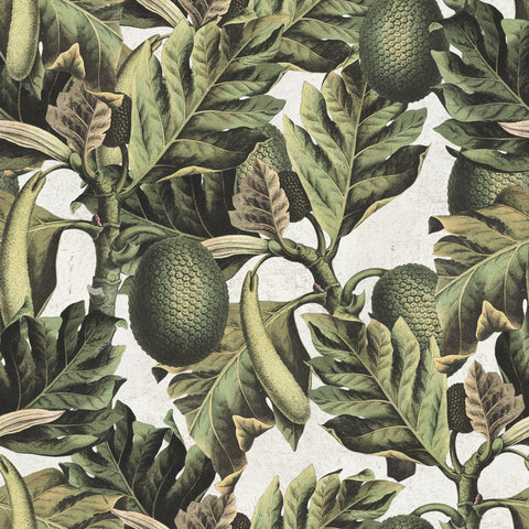 Exotic Fruit I Wallpaper in Green and Grey from the Tropical Vibes Collection by Mind the Gap