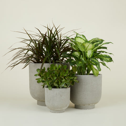 Fiber Cement Footed Planters by Hawkins New York