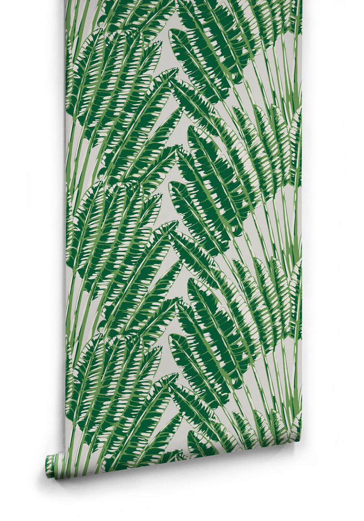 Sample Feather Palm Wallpaper in Aloha from the Kingdom Home Collection by Milton & King