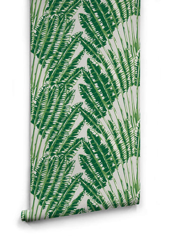 Feather Palm Wallpaper in Aloha from the Kingdom Home Collection by Milton & King