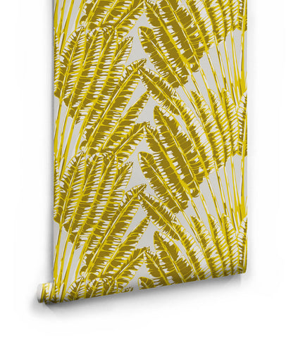 Feather Palm Wallpaper in Golden Palm from the Kingdom Home Collection by Milton & King