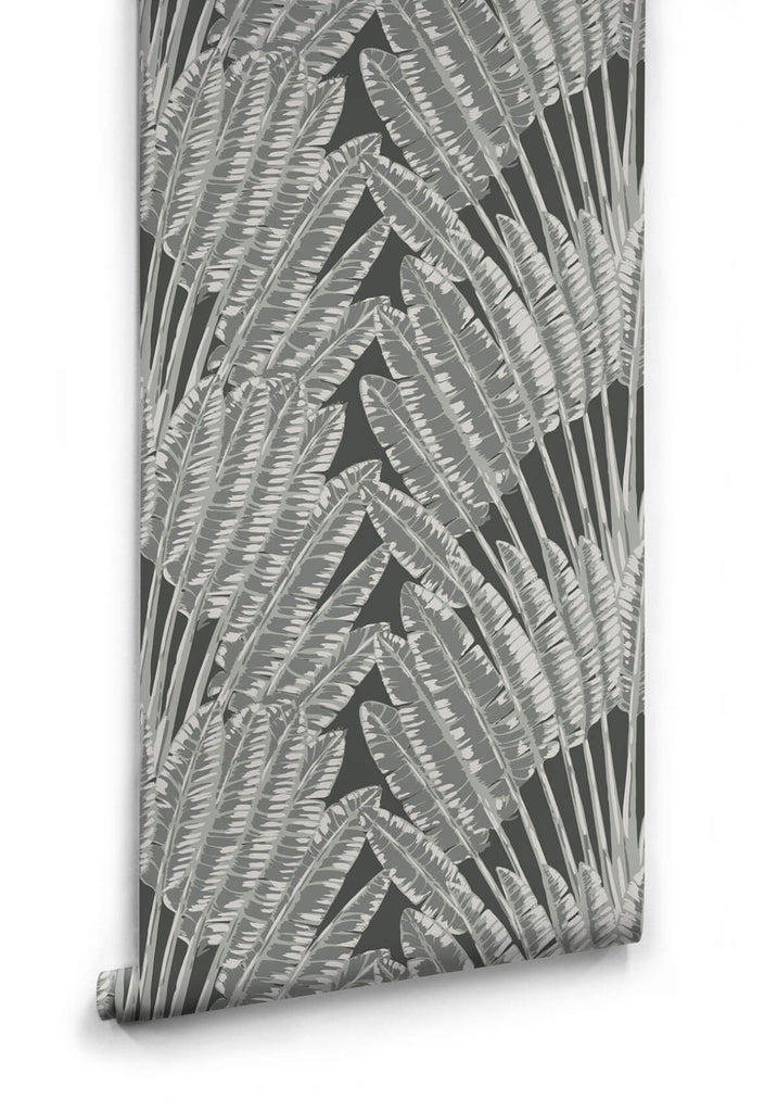 Feather Palm Wallpaper in Night Palm from the Kingdom Home Collection by Milton & King