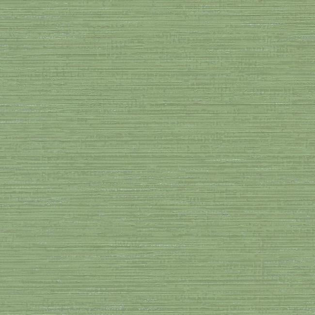 Sample Fine Line Wallpaper in Green from the Design Digest Collection by York Wallcoverings