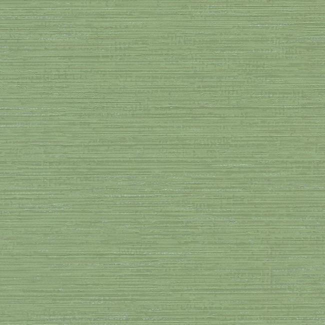 Fine Line Wallpaper in Green from the Design Digest Collection by York Wallcoverings