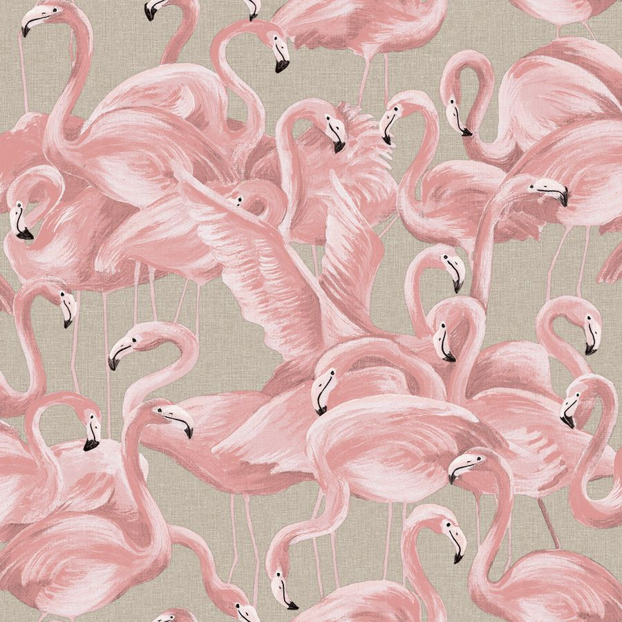 Sample Flamingo Self-Adhesive Wallpaper (Single Roll) in Ballerina Pink by Tempaper