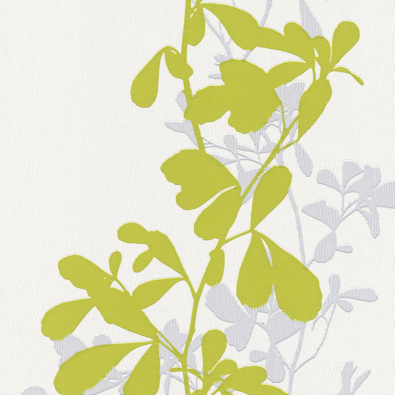 Sample Foliage Wallpaper in Green and Grey design by BD Wall