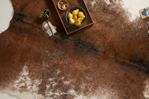 Grand Canyon Rug in Coffee & Ivory design by Loloi