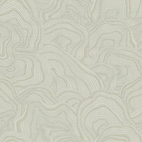 Geodes Wallpaper in Taupe from the Ronald Redding 24 Karat Collection by York Wallcoverings