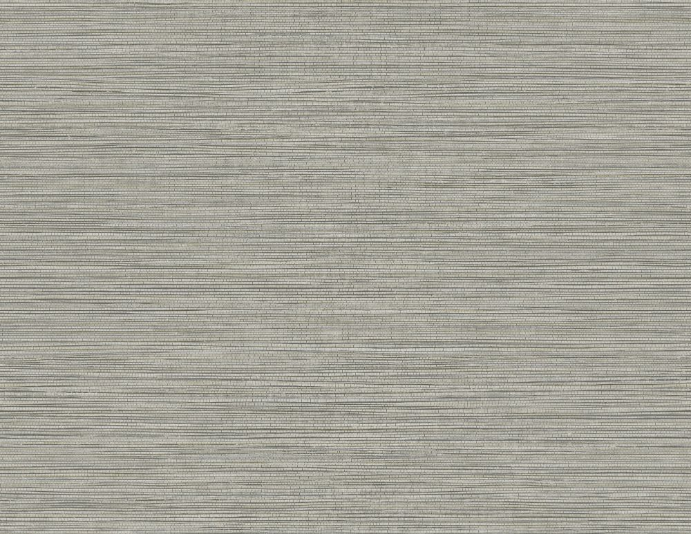 Grasslands Wallpaper in Graphite from the Texture Gallery Collection by Seabrook Wallcoverings