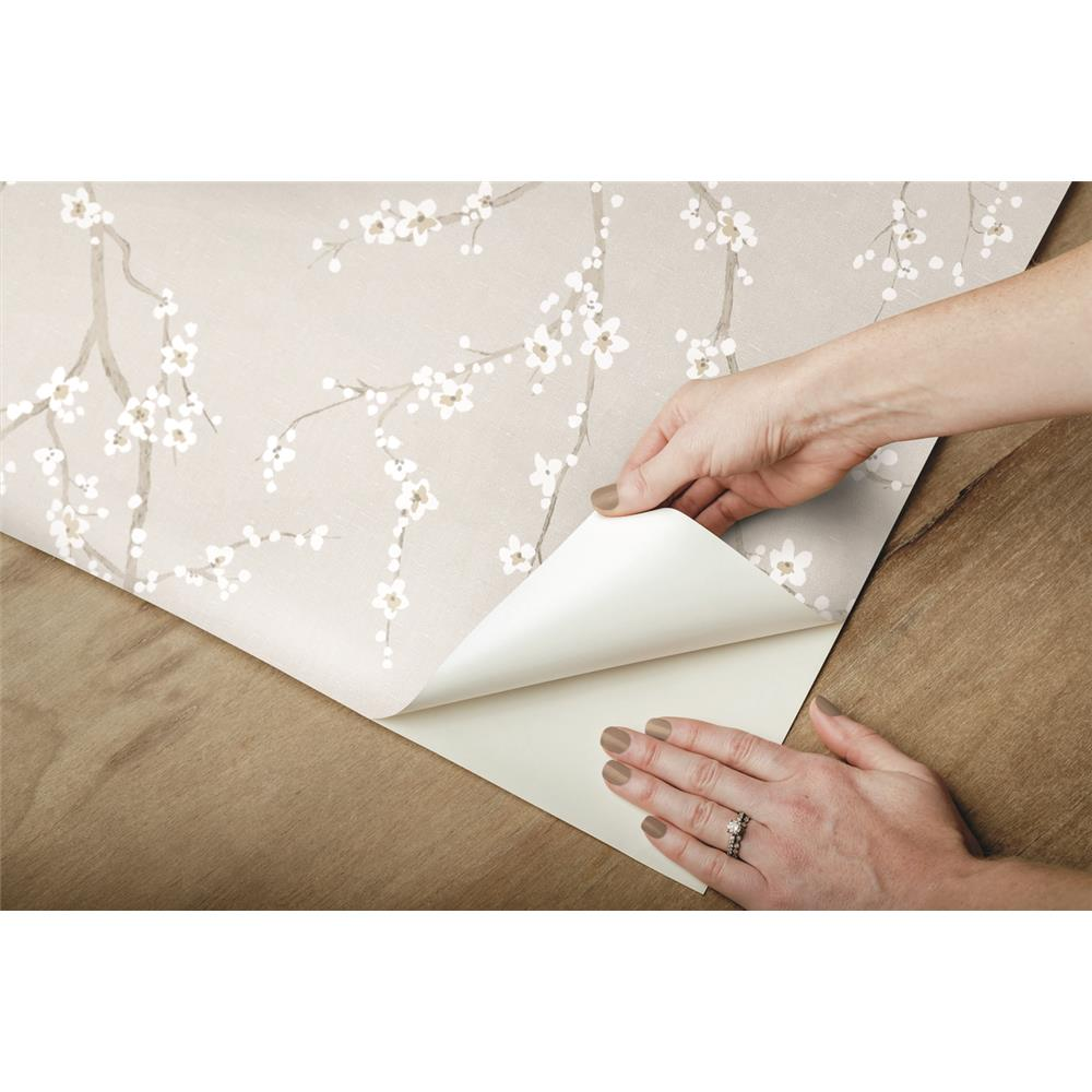Grey Cherry Blossom Peel & Stick Wallpaper by RoomMates for York Wallcoverings