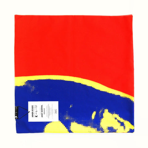 Andy Warhol Art Pillow in Red, Blue, & Yellow design by Henzel Studio
