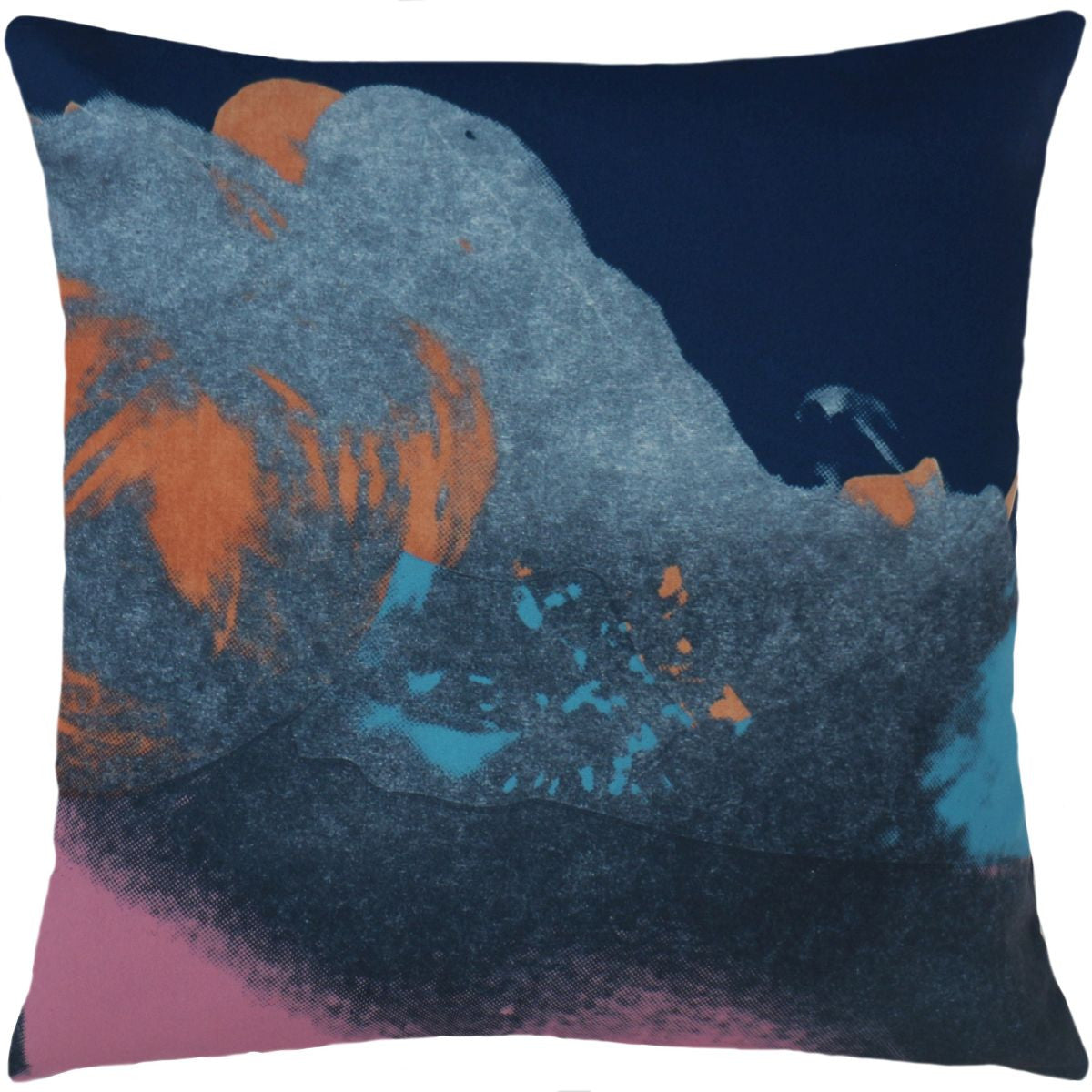 Andy Warhol Art Pillow in Pink & Blue design by Henzel Studio ...